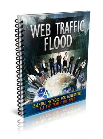 Web Traffic Flood