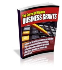 The Secrets Of Winning Business Grants