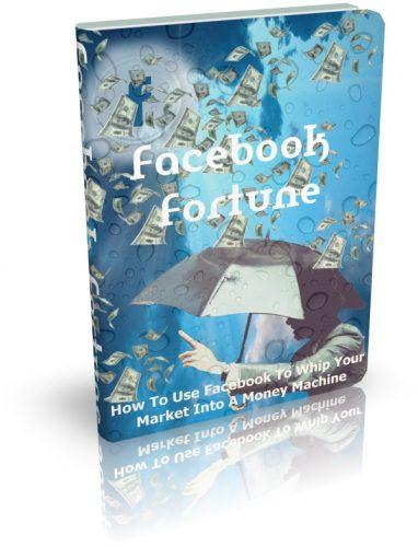 Facebook Fortune